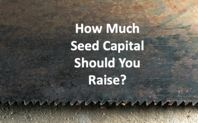 How Much Seed Capital Should You Raise?